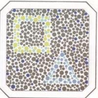 На рисунке изображены квадрат с треугольником