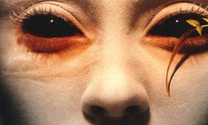 Склеральные линзы – описание, фото, история появления