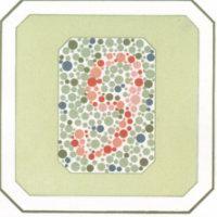 Если у человека нормальное зрение, он распознает цифру 9