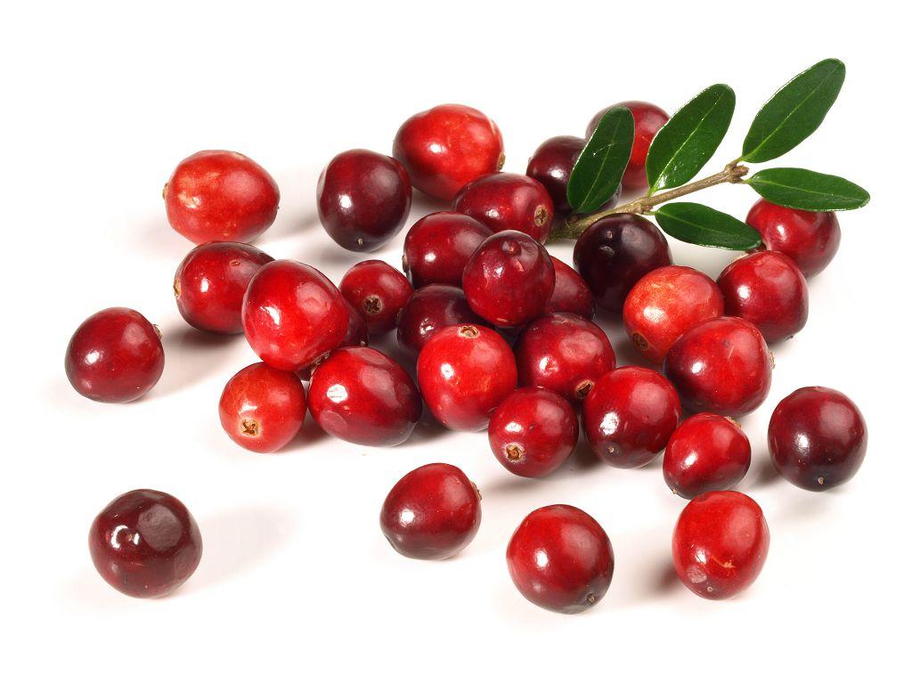 Клюква богата витаминами, необходимыми для укрепления зрения