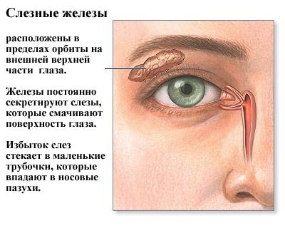 Сухость слизистой глаза - причина ухудшения зрения