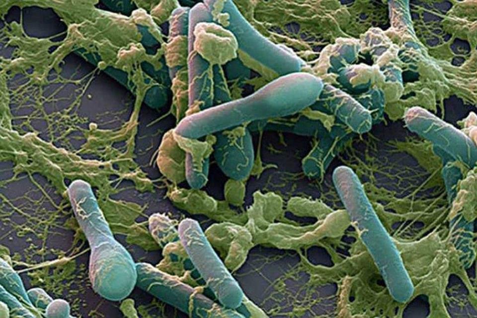 Инфекционные заболевания тоже могут вызывать диплопию