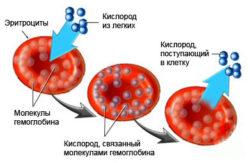 Расщепление гемоглобина (необязательно с травмой)