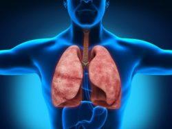 Болезни дыхательной системы, поджелудочной железы