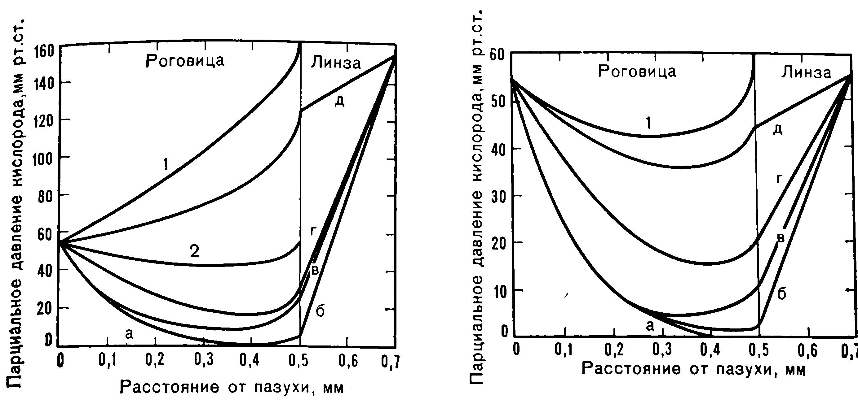 Парциальное давление кислорода в роговице при использовании мягкой контактной линзы толщиной 0,2 мм и диффузионная способность линзы по отношению к кислороду. Веко поднято