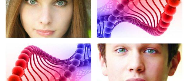 Любопытные факты о цвете глаз. Генетика на практике