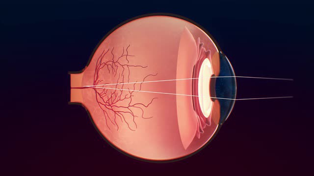 Недуги глаз являются довольно опасными для человека, поскольку они могут спровоцировать полную утрату зрения