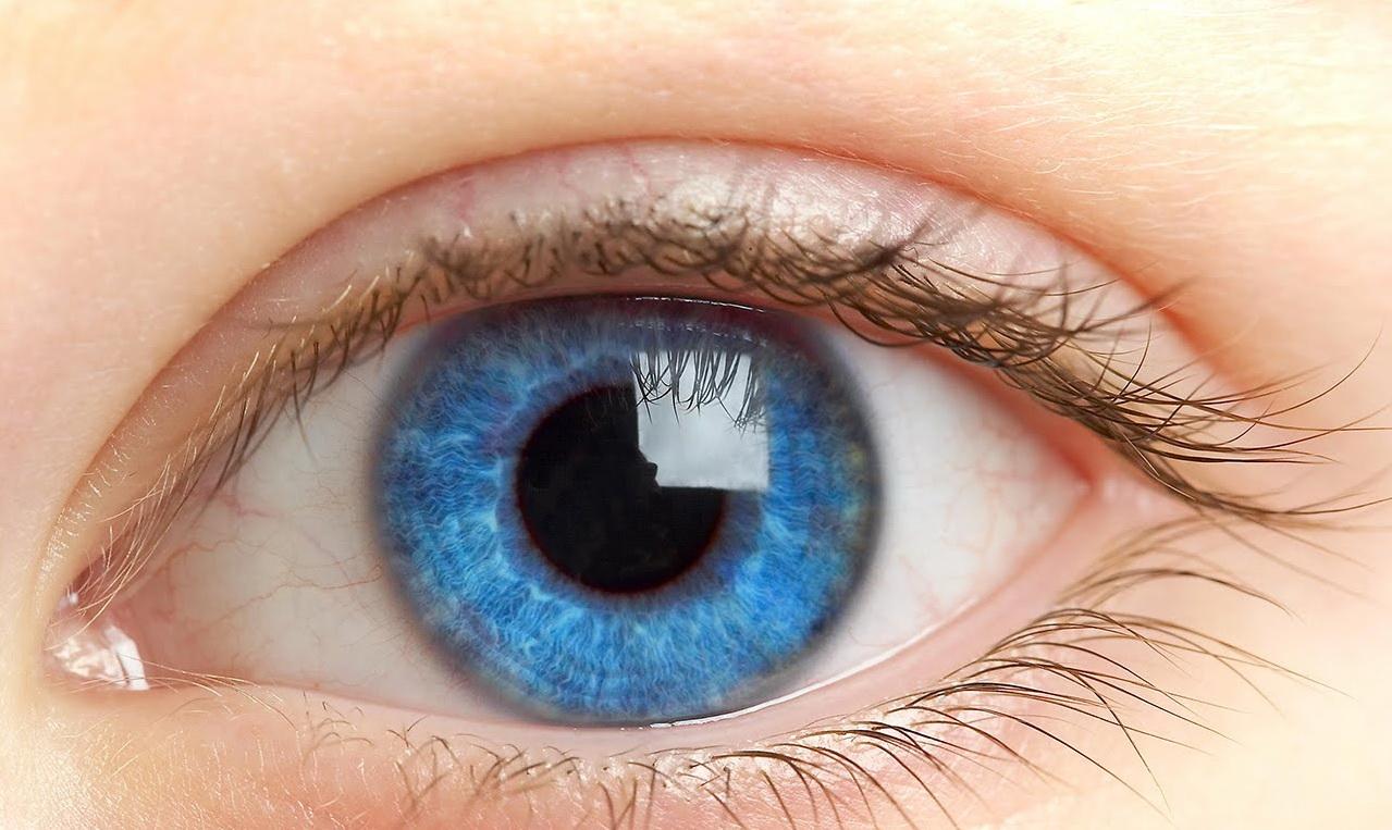 Оцените цвет глаз родителей