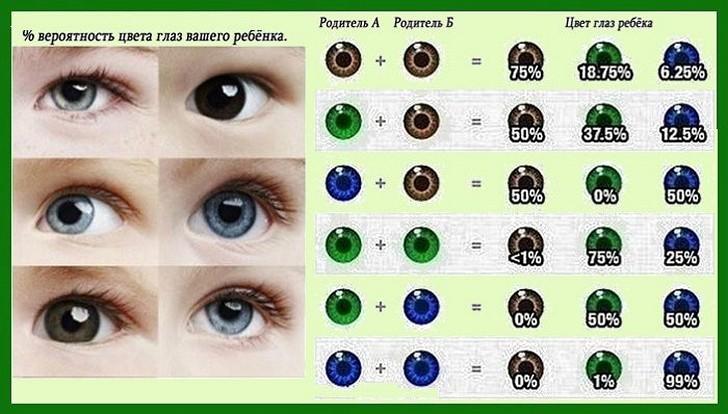 Таблица совместимости глаз ребенка и родителей