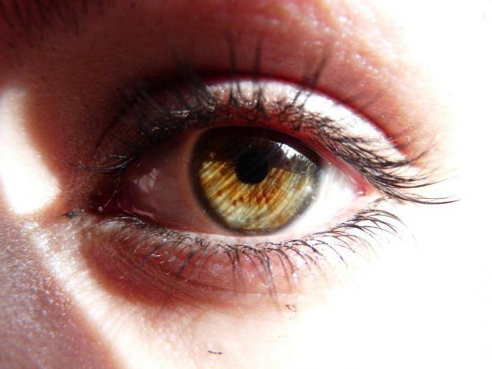 Ячмень на глазу - лечение быстро у взрослого