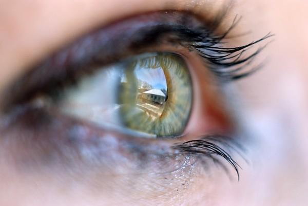 Светочувствительность глаз