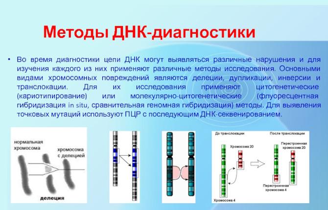 Методы ДНК диагностики